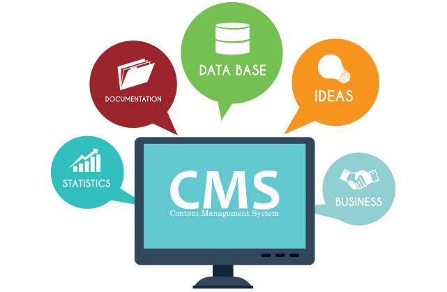 Content Management System Skynyx Techonologies Private Limited